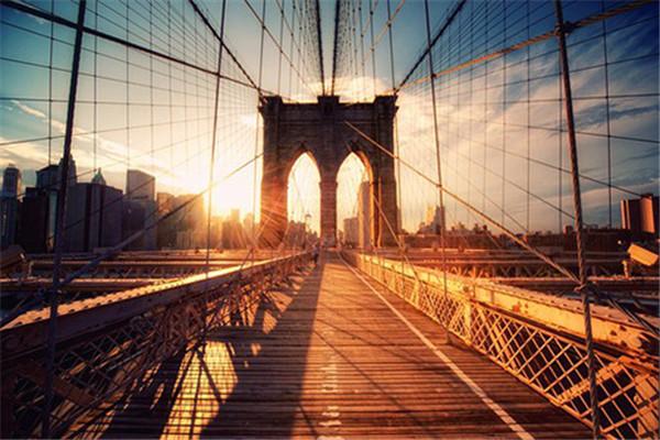 求都市:每日任务一个亿小说免费资源