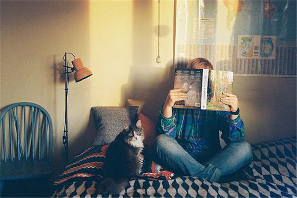 作者适闲客小说《刺杀包青天》在线阅读